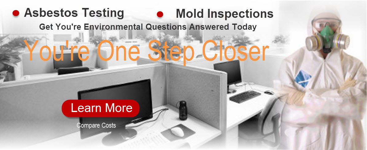 Mold-Testing-and-asbestos-inspections-in-losangeles
